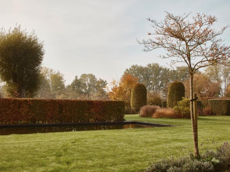 Tuin s lo landschap de witte kamer landschapsarchitectuur en interieurarchitectuur voor - Witte kamer en fushia ...